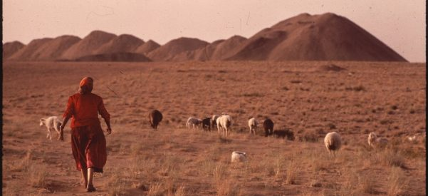 Tending sheep on the Navajo Reservation, May 1972. Photo by Terry Eiler/Wikimedia Commons.