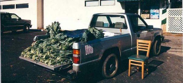 A truck farmer selling collards in Wadesboro, North Carolina. Photo courtesy of Edward H. Davis.