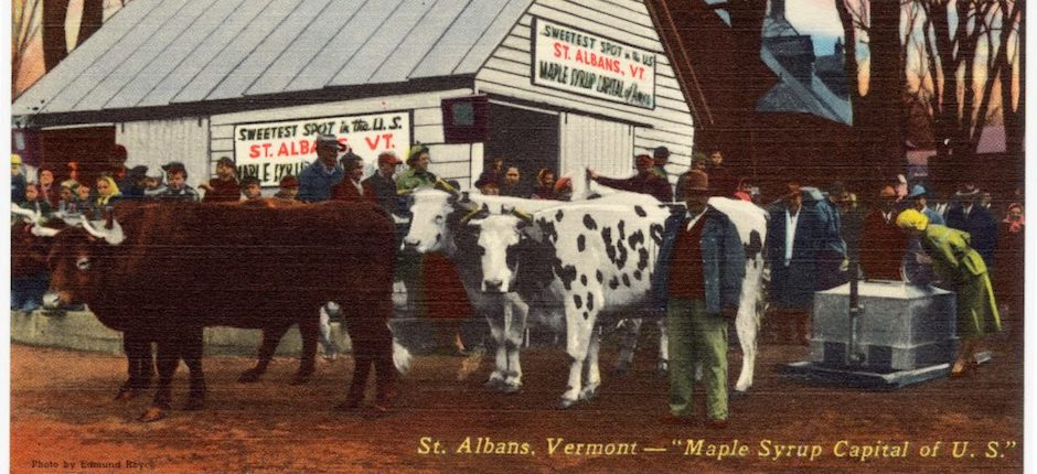 "Postcard depicting St. Albans, Vermont, ""Maple Syrup Capital of U.S.,"" circa 1930-1945. Image courtesy of Wikimedia Commons."
